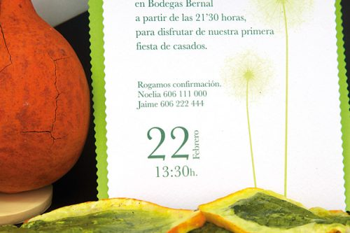 100510-3-invitaciones-boda-detiketa