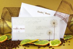 invitaciones-boda-detiketa-transparente